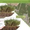 7.1-Valli_del_Mincio_un_eden_di_natura_dEuropa_Interventi_di_ripristino_idrodinamico_per_il_potenziamento_della_navigazioneturistica_e_dei_percorsi_in_canoa.jpg